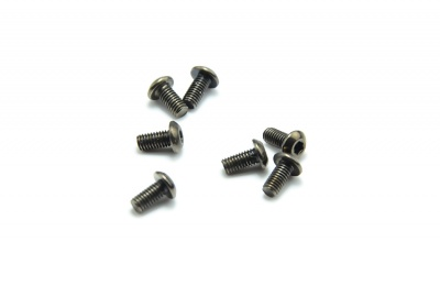 Screw pack M2,5x6 (10pcs)